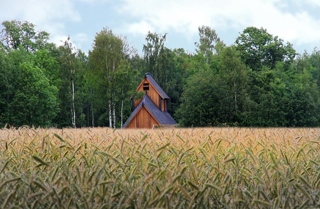 Long House in Barley Field