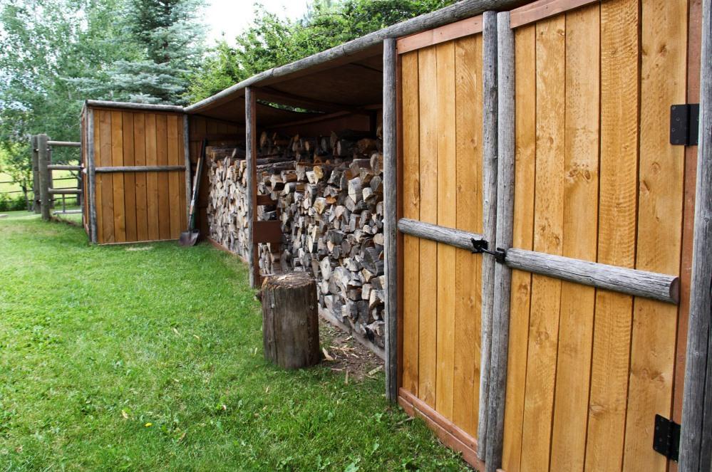 the-backyard-6